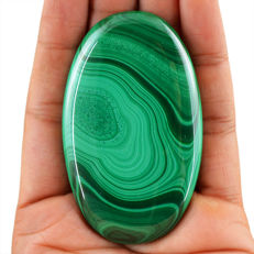 Premium Huge Malachite Cabochon Polished - Best Quality - 75x45x07 mm - 72 Gms
