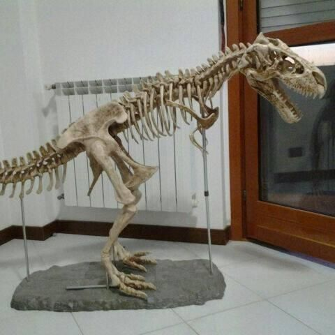 Realistic T.rex dinosaur replica - height: 120 cm, length: 200 cm