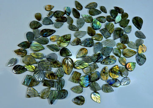 Lot Carving Labradorite Cabochone - 500 ct
