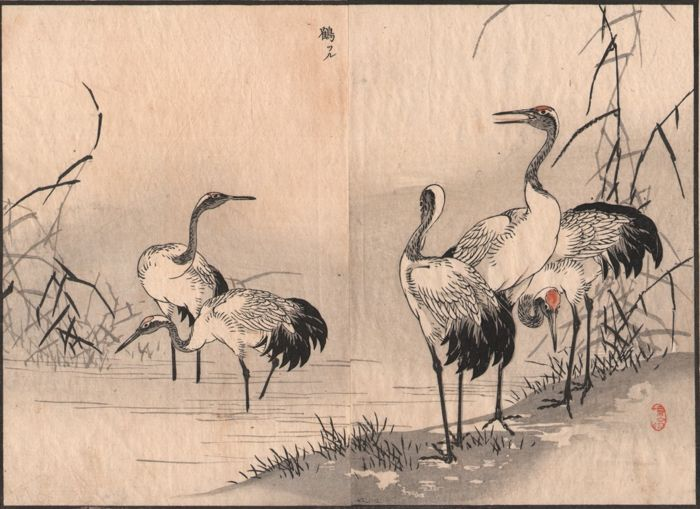 Kono Bairei (1844-1895) - A group of Cranes on a river bank