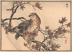 Kono Bairei (1844-1895) - A hawk with his prey