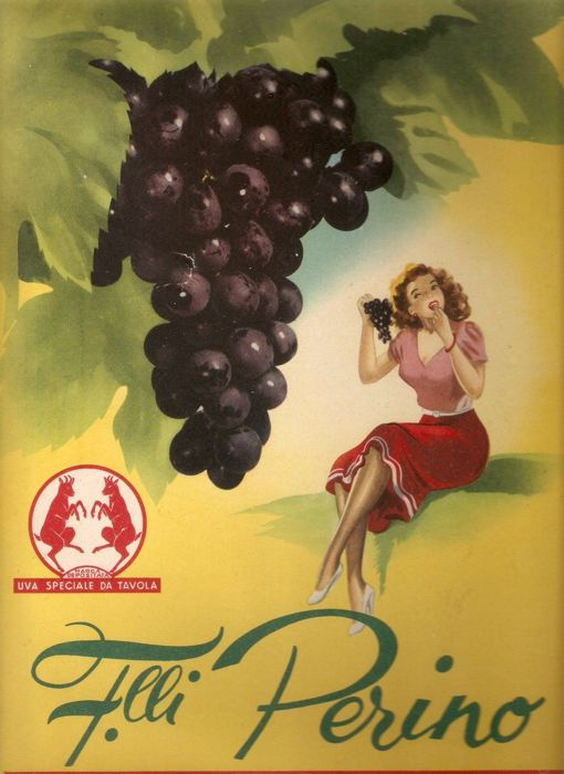 Sign on a advertising cardboard of F.lli Perino - circa 1950 - by Gian Rosa