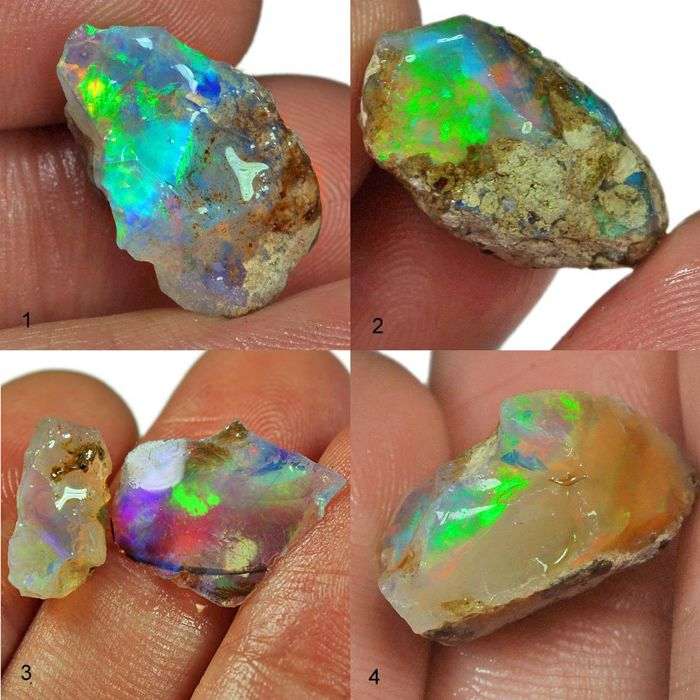 Four top lot of colour play effect Welo opals, Ethiopia - 30,25 ct (4)
