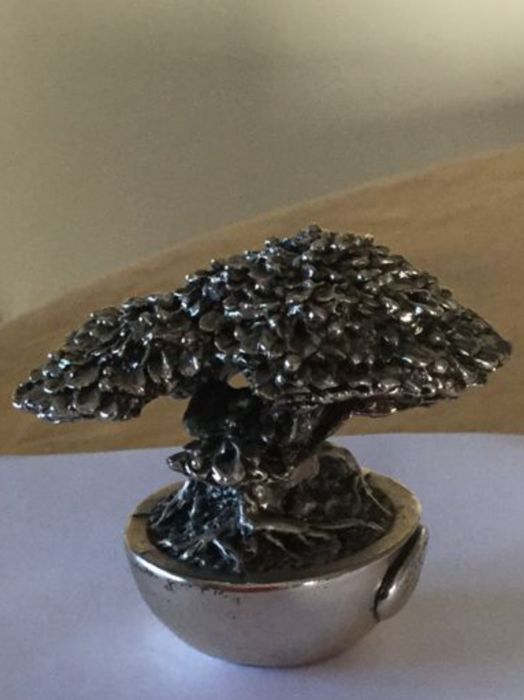 Silver plated bonsai, Italy
