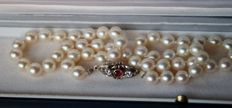 White Japanese cultivated Akoya pearls ca.7.8 mm, good lustre with gold 750/18kt. clasp set 2 solitaire brilliants F/VVS and Ruby.