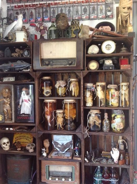 Classic Curiosity Cabinet - various, too much to list - foetuses, skulls and Gothic - includes Freddy Kruger's hand