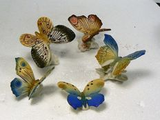 Volkstedt, Karl Ens - Five fine, colourful butterflies