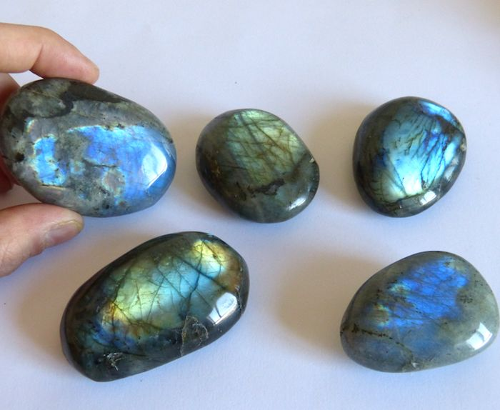 Magnificent collection of labradorites - 6.6 to 5.1 cm - 400 g (5)
