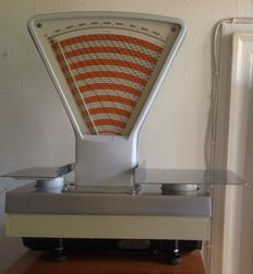 Professional grocer weighting scales - Lux A10