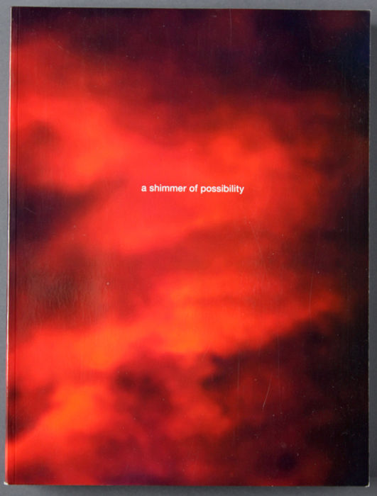 Paul Graham - A shimmer of Possibility - 2009