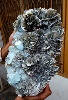 Extra Large Plate of Aquamarine Crystals Bunch with Mica - 34 x 21 x 19 cm - 8 Kg