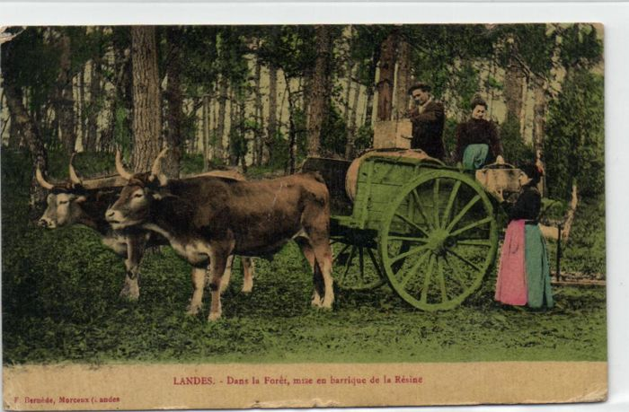 France 63X - Beautiful vivid cards of various places -1900/1935 ...