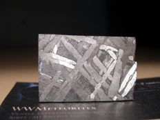 Seymchan Iron Meteorite - Rectangular slice with nice Widmanstätten pattern