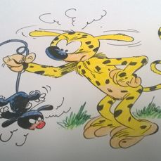 Batem - Original drawing in colour - Marsupilami et le petit Marsupilami noir - (2016)