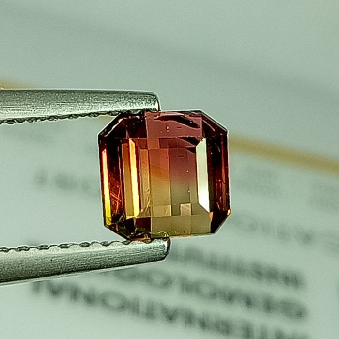 Bi-Color Tourmaline - 1.08 ct