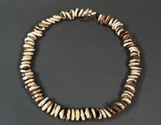 Ancient, rare and particularly valuable kauri shell necklace - TIMOR - Indonesia