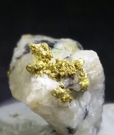 Old Find!! Gold on Quartz from Russia (No Reserve) - 17 x 14 mm - 2.1g