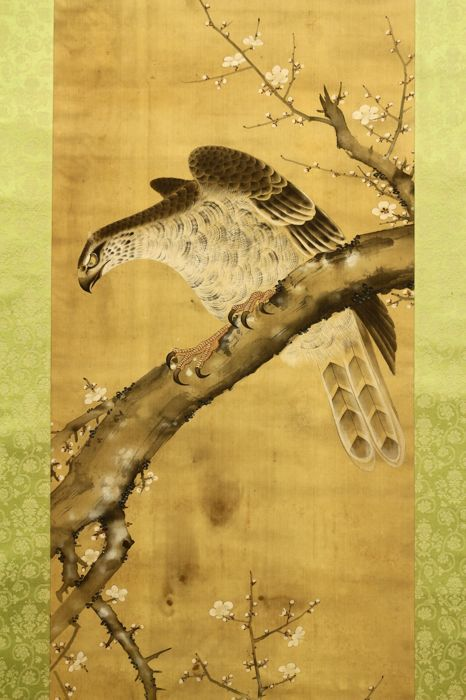 "Hand painted hanging scroll Signed and Sealed Saikaku 栖鶴 - ""Hawk on Ume Tree"" - Japan - Late 19th century (Meiji Period) w/box"