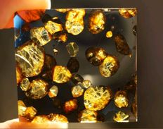 Brahin - pallasite - spectacular cut with translucent olivines