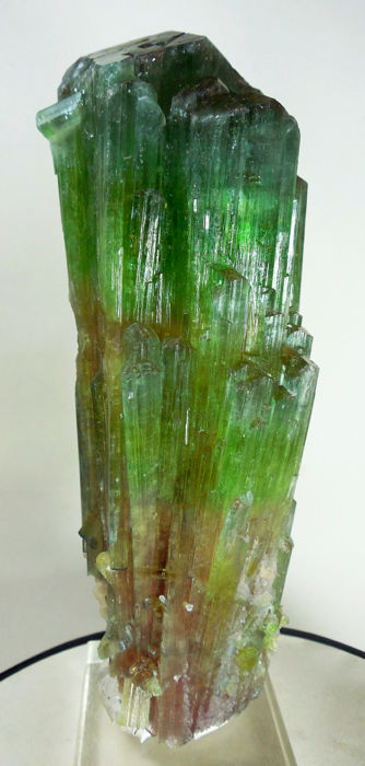 Superb, World Class Multi Color Paproke Tourmaline Crystal - 17 x 7 cm - 1190gr