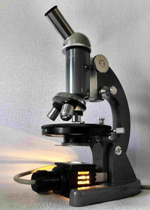 Complete biological microscope Euromex LK, Arnhem, the Netherlands, third quarter of the 20th century.