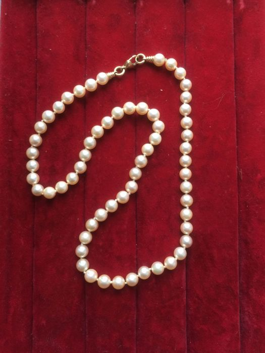 Gold necklace with cultured salt water pearls – 7 mm