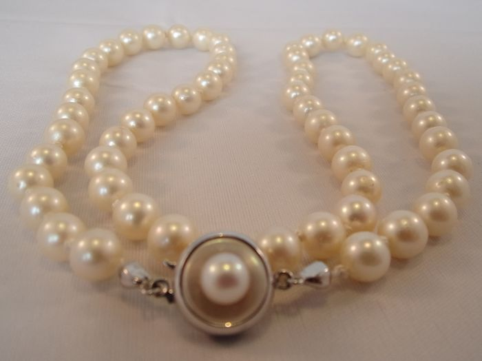 Freshwater pearl necklace with a 14 kt white/yellow gold clasp