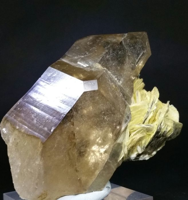 Amazing Smokey Quartz crystal with Muscovite - 106 x 75 mm - 280g