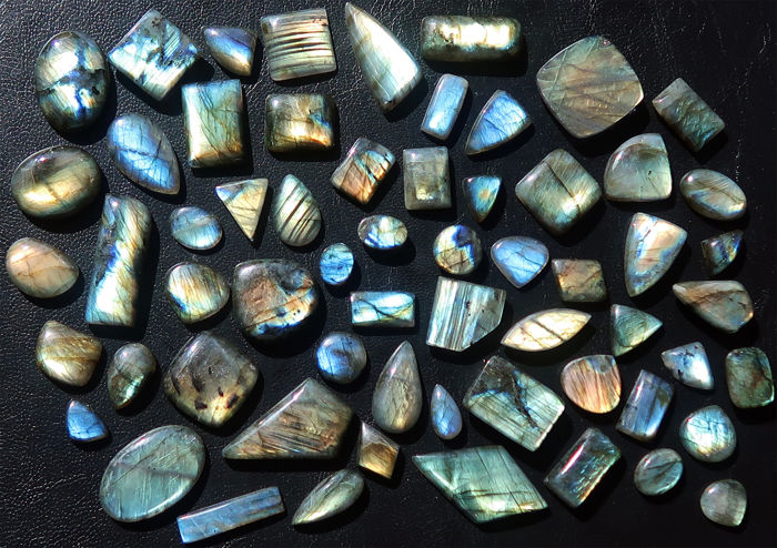 Impressive lot of Labradorites - various shapes - vibrant colours - 1445 ct (61 pieces)