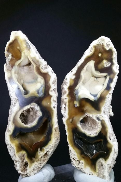 Beautifull Pseudomorphose Coral to Agate - 105 x 40 mm - 133g