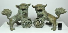 Two giant Foo Dogs - China - Late 20th Century (63cm)