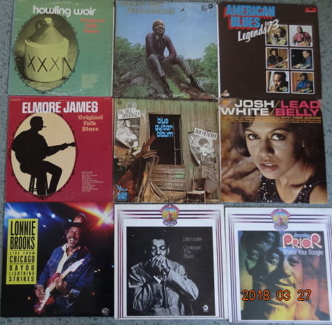 9 Albums (11 LP's) Of Steaming Blues !