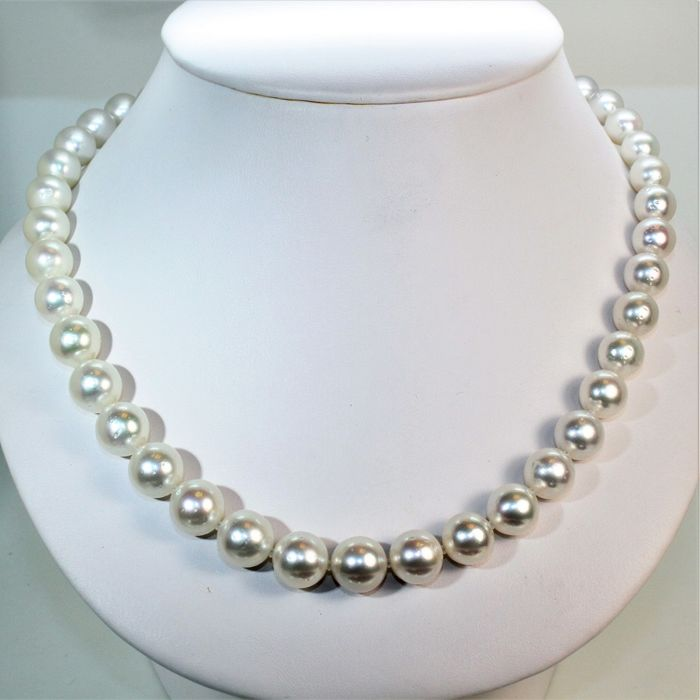 Southsea necklace Ø 9,2x12mm - cultured pearls round - 925Silver clasp