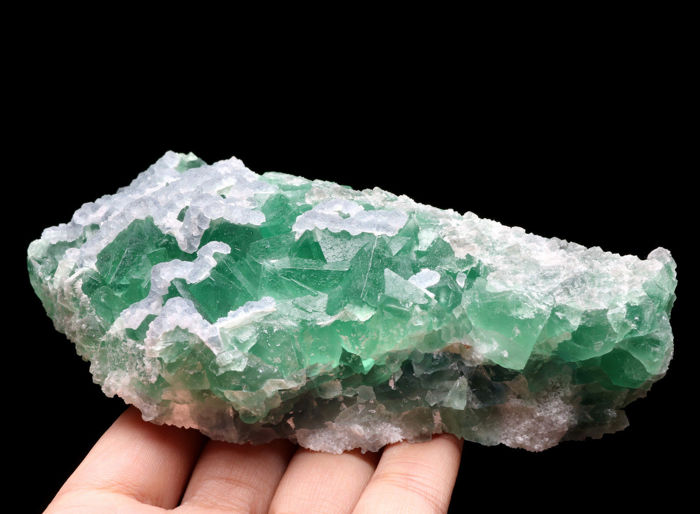 Fine emerald green octahedral fluorite with lilac fluorite on top.14,3 x 7 x 4,8 cm - 600 gm