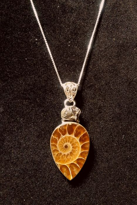 Pendant + silver chain with Campo del Cielo meteorite and ammonite from Madagascar