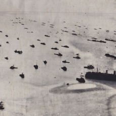 Unknown  - Allied fleet on D-Day, 1944
