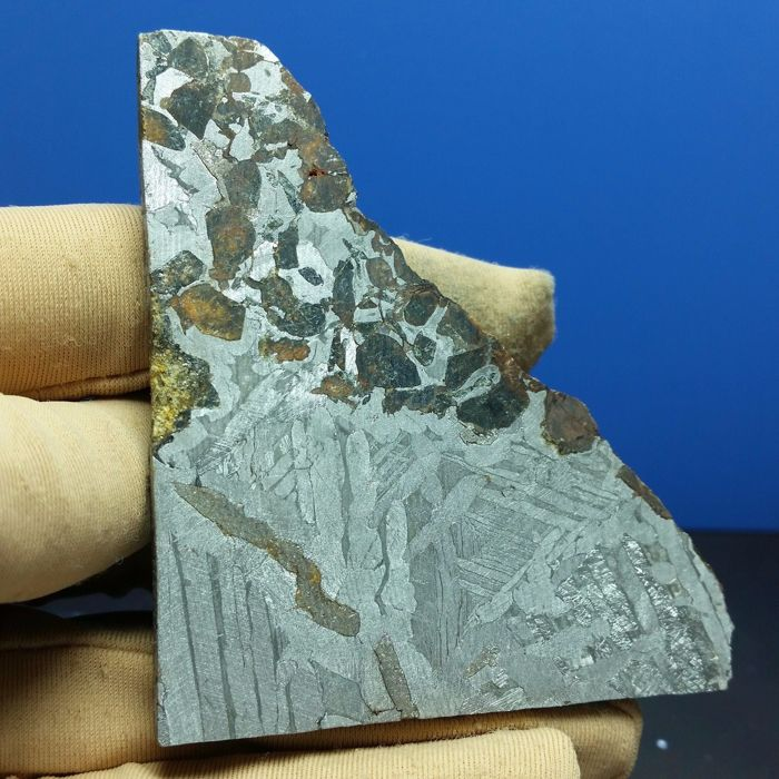 Seymchan Pallasite slice with clear olivines - 81,6 grams