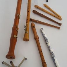 A large lot of recorders (7) and accessories