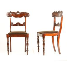 Two William IV mahogany chairs with carving in the back - England - ca. 1830