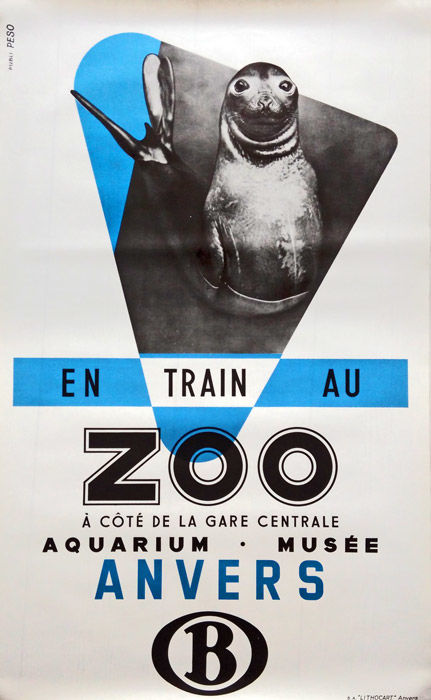 Studio Peso - Antwerp Zoo (elephant seal) - ca. 1950