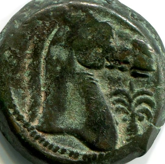 Greek Antiquity - Carthage, Sicily and Sardinia Mint - Struck 300-264 BC – Punic Bronze Tanit / Horse's head and palm tree symbol