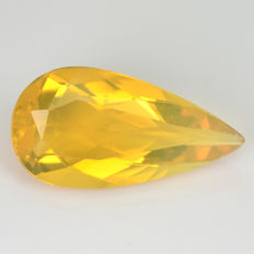 Fire Opal - 2.42 Carat - Yellow, Transparent - No Reserve