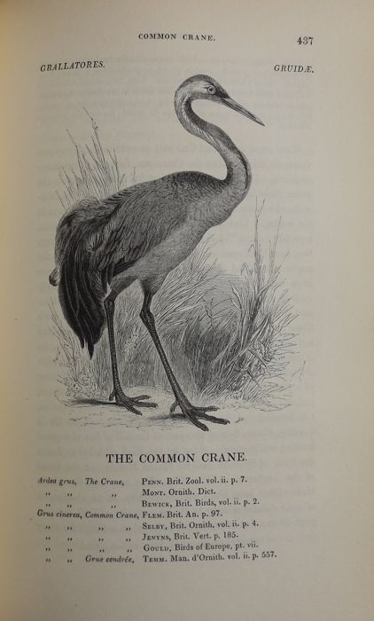 William Yarrell - A History of British Birds - 1843