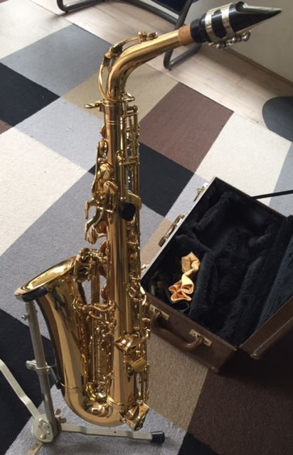 Good alto saxophone from Director, in beautiful case, with accessories