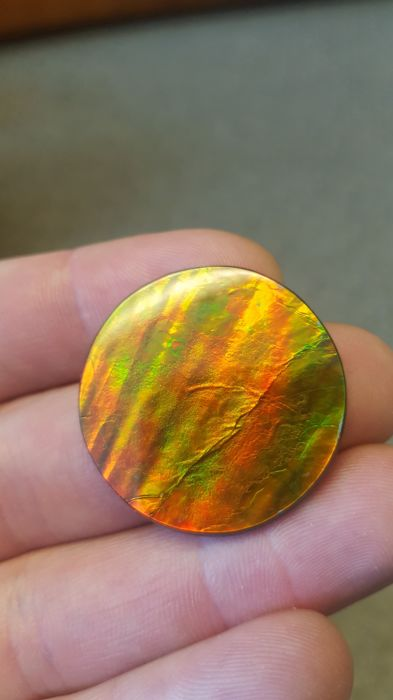 Free-form Ammolite Gemstone - 33 ct