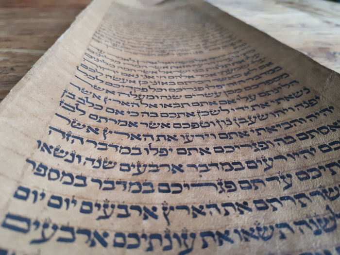 Manuscript; Fragment of the Torah - 18th century
