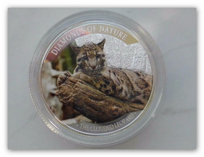 Fiji - 10 dollars 2013 'Clouded leopard / Diamonds Of Nature' - silver