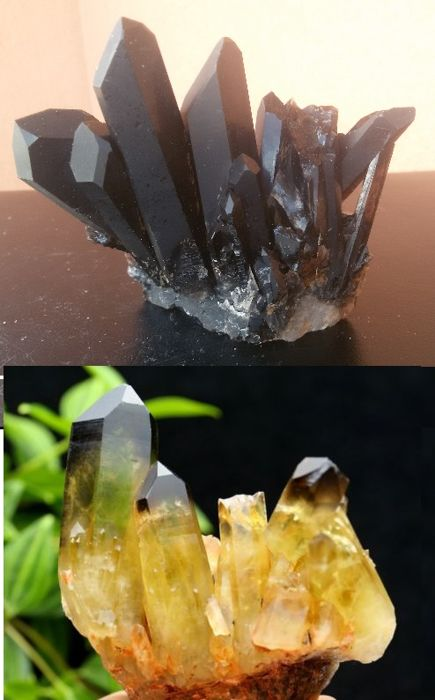 Black Quartz + Citrine Crystal Cluster - 85 x 35 x 77 mm + 78 x 41 x 85 mm  - 340 g