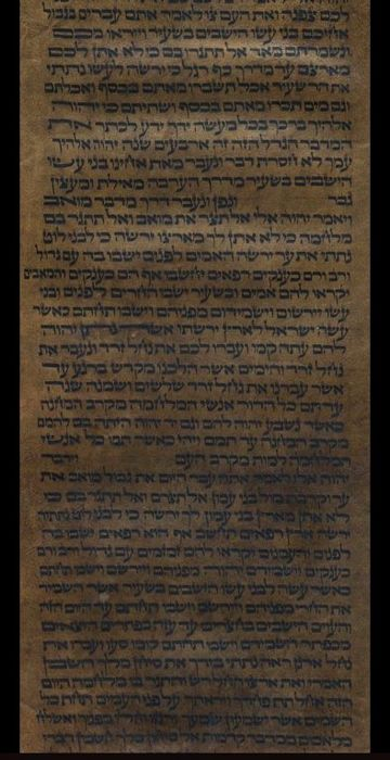 Manuscript; Torah fragment on vellum scroll (Turkey) - 19th century