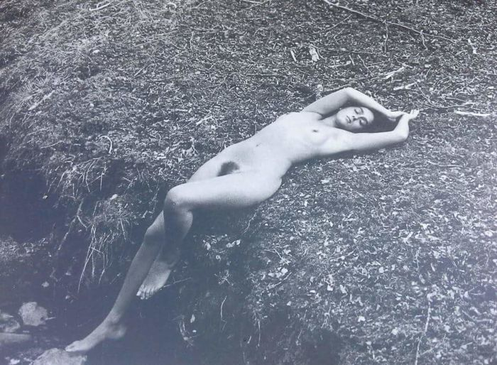 John Swannell (*1946) - Nude in a forest
